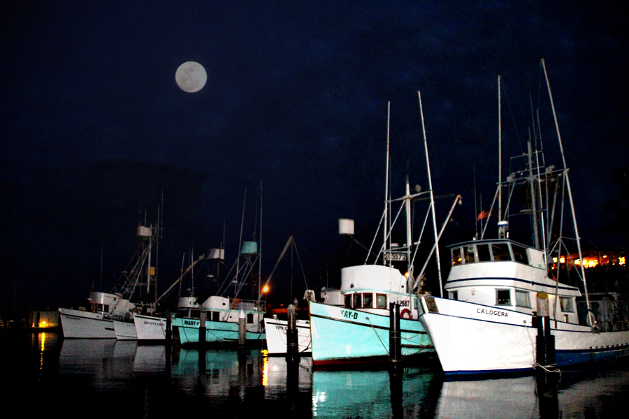 Chasing The Moon, Santa Barbara Harbor, Sailboats, Perigee