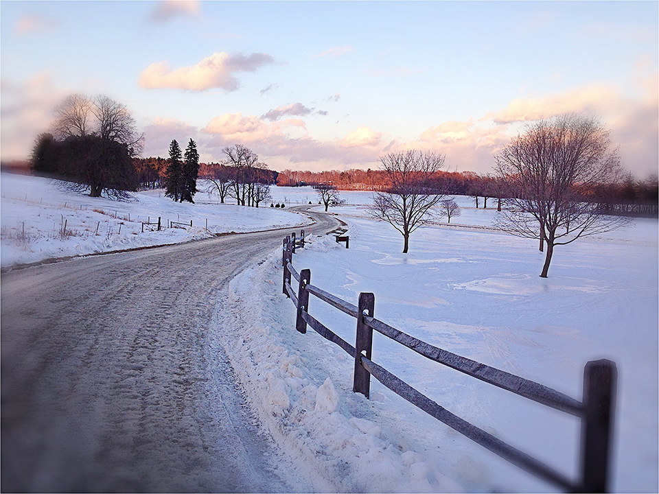 things to do in burlington in the winter, sustainable farming, shelburne farms vermont