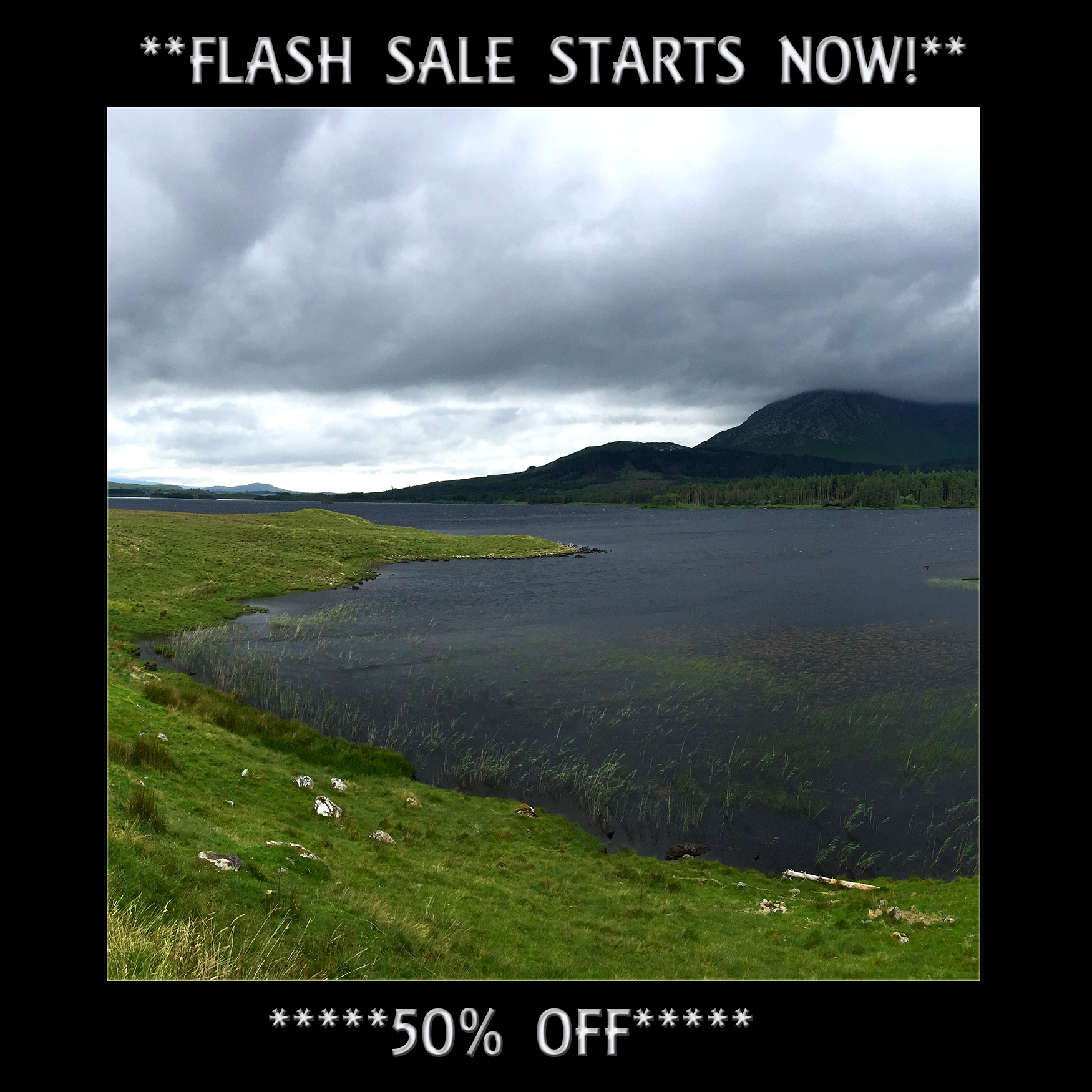 Flash Sale  for gallery