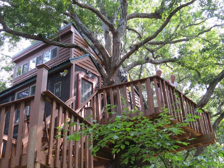 White Oak treehouse by Garden of the Gods,  Elizabeth Town, Illinois- Unique Airbnb's