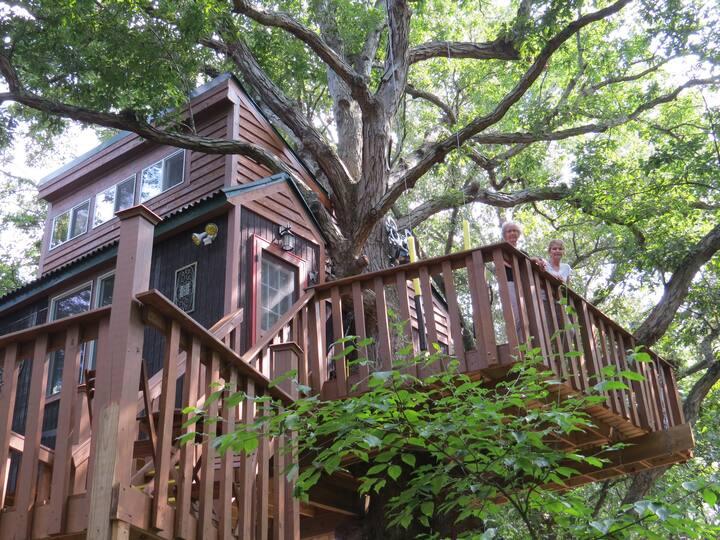 White Oak treehouse by Garden of the Gods,  Elizabeth Town, Illinois- Unique Airbnb's